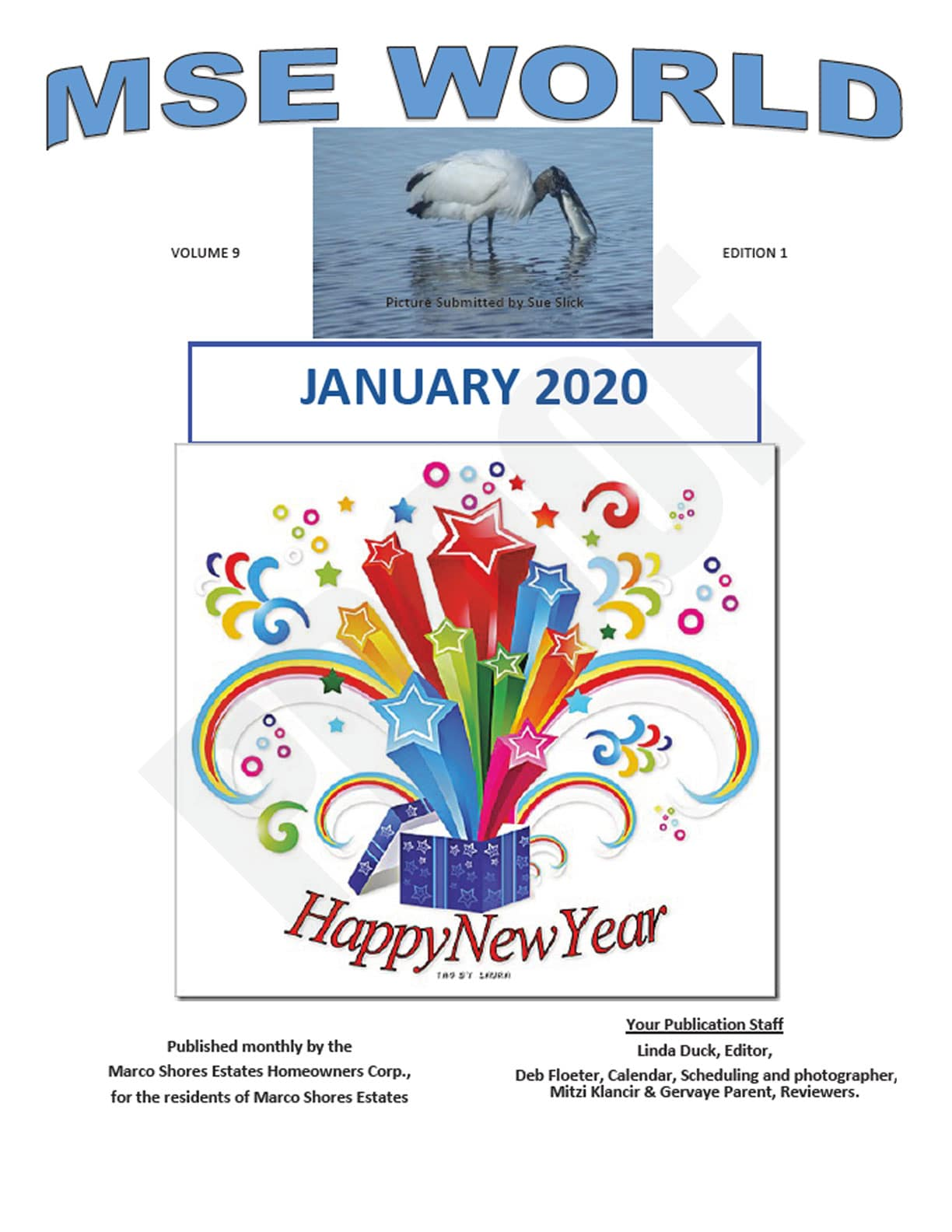 MSE World January 2020 Edition